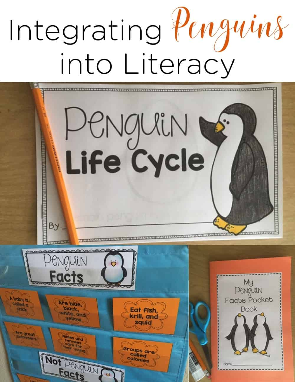 Integrating penguins into your literacy and science time is easy with these penguin activities for kindergarten and first grade!