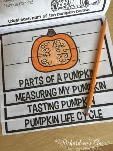 Pumpkin Flip Up Book