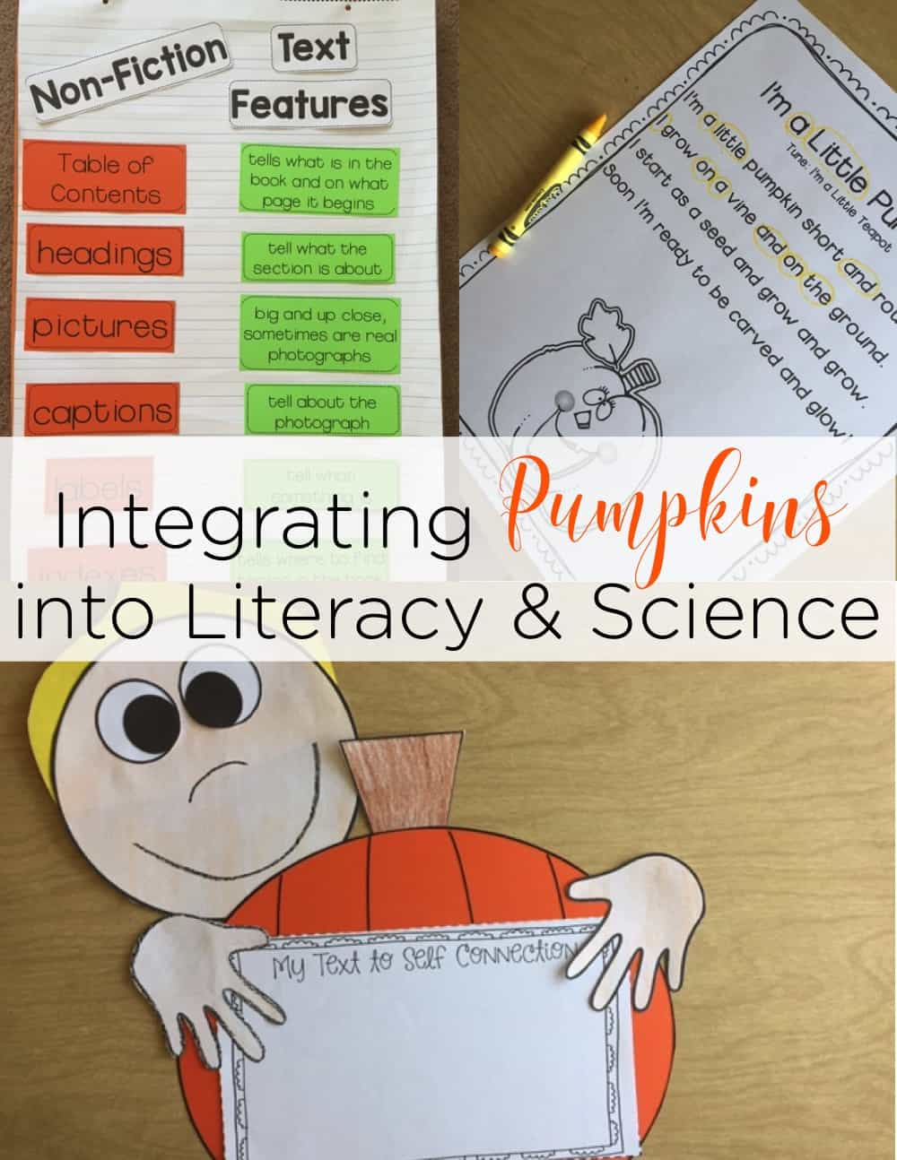 Integrating Pumpkins in k-2 is the perfect way to squeeze science into reading and writing! These pumpkin activities were completely engaging in my classroom!