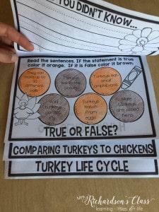 Turkey Flip Up Book