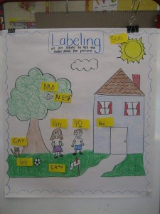 Labeling Anchor Chart for Kindergarten and First Grade