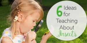 6 Ideas for Teaching About Insects-Love the video linked in here!