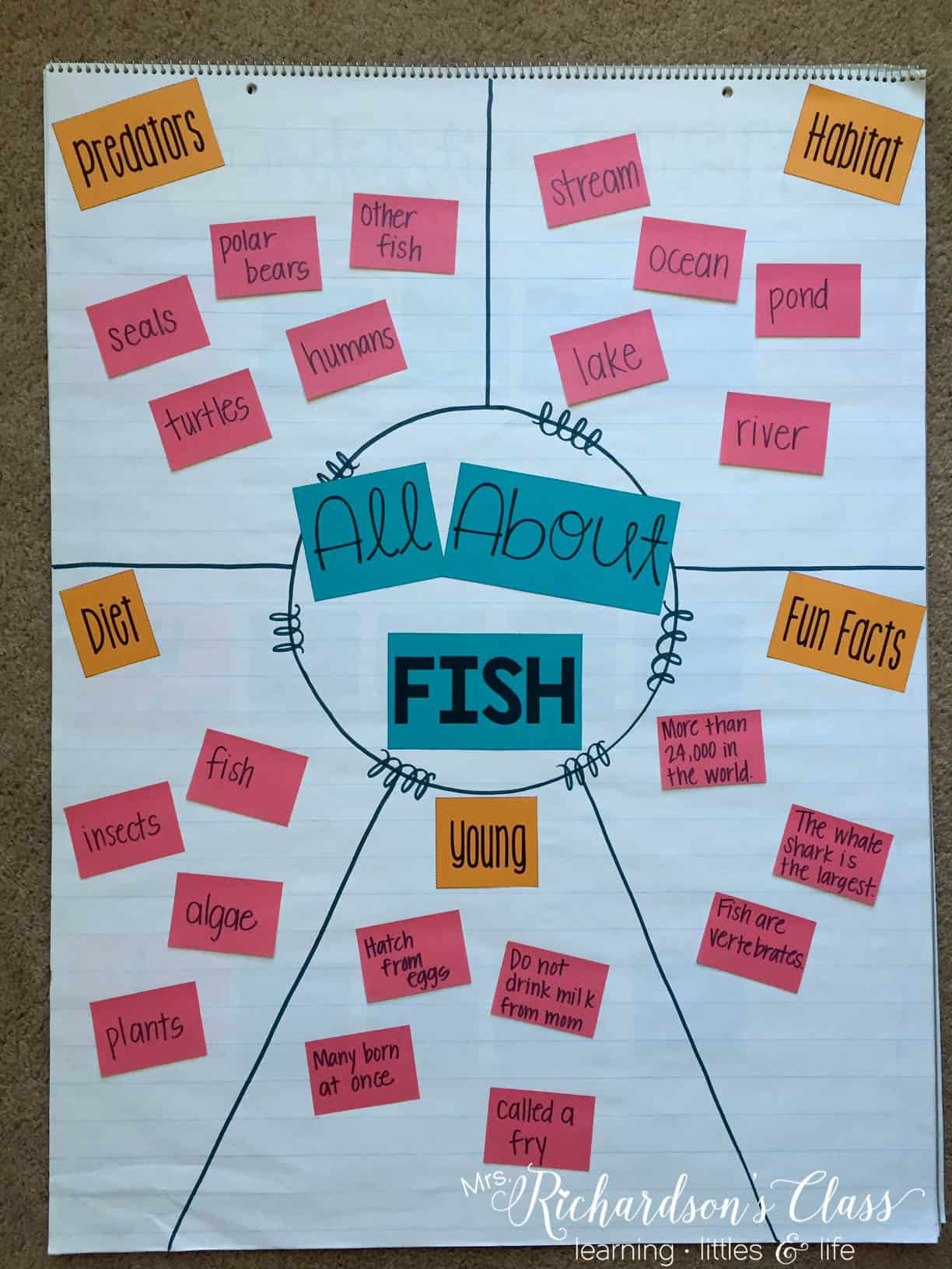 Science anchor charts are made easy for you to create with your students AND work in some shared writing time!