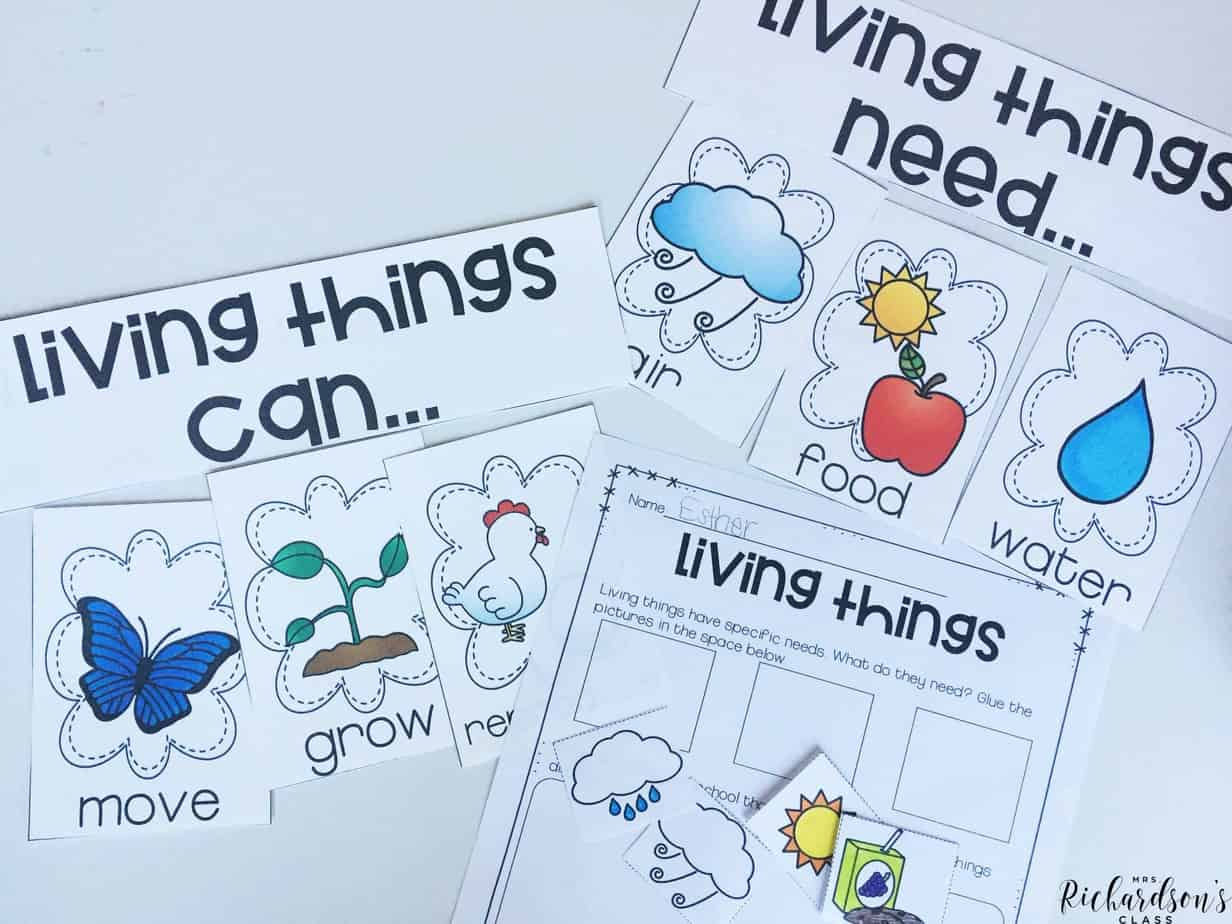 Characteristics of living things are all the buzz in the spring for science! Learn about living things through these activities in this science bundle!