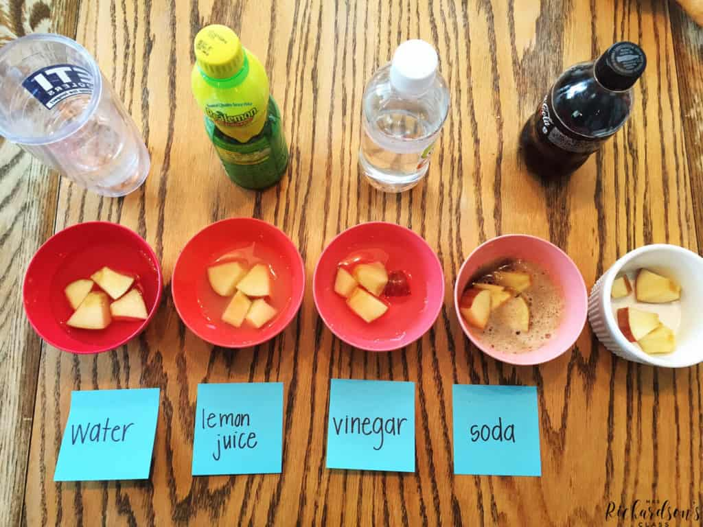 Are you in need of an engaging science experiment about apples? This apples science experiment has easy to follow directions and a great reflection page!