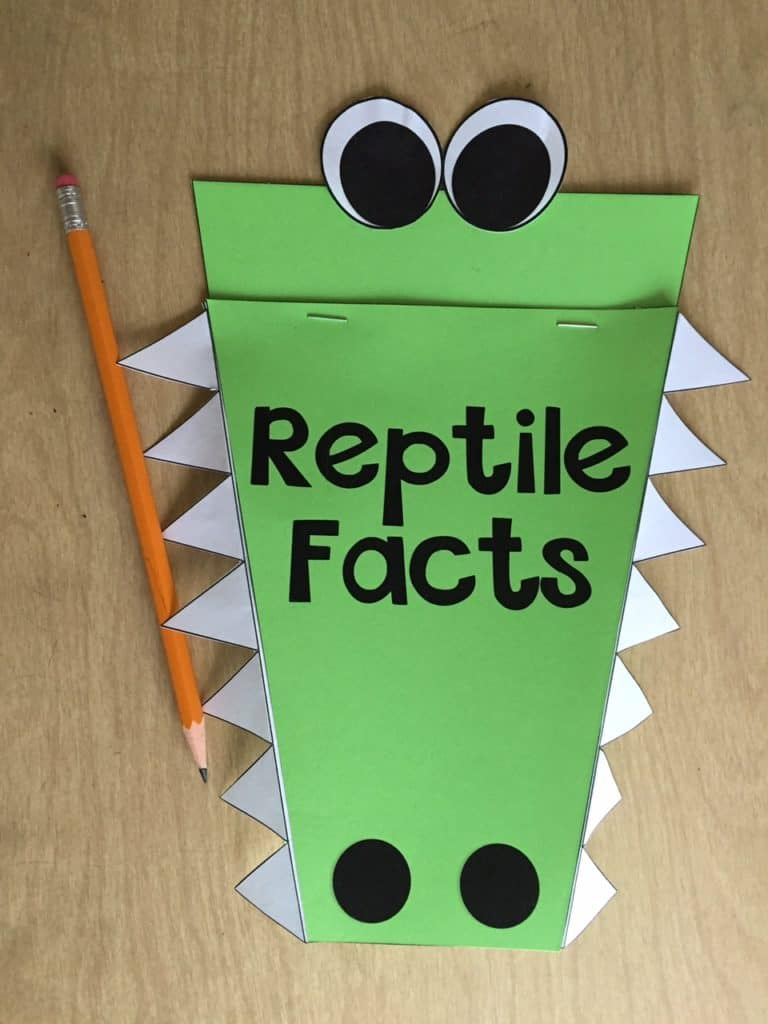 Engage your scientists with this reptile craft that integrates writing! Students can write reptile facts that they have learned while also practicing writing conventions!
