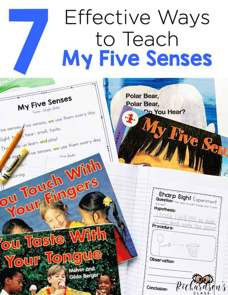 7 Effective Ways to Teach My Five Senses