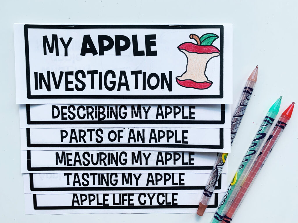 This apple investigation flip up book has tons of activities in one place for your students to use as they learn about apples.