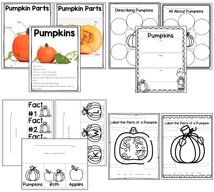 Use engaging and hands-on pumpkin activities for your pumpkin science unit to help students master their standards while having fun.